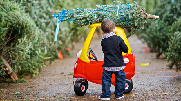 Kids play with toy cars like the Cozy Coupe partly because they want to imitate their parents: turn a steering wheel, open a door, strap a Christmas tree to the roof. But toy cars aren't just fun and games; they can suggest future trends in the automobile industry.