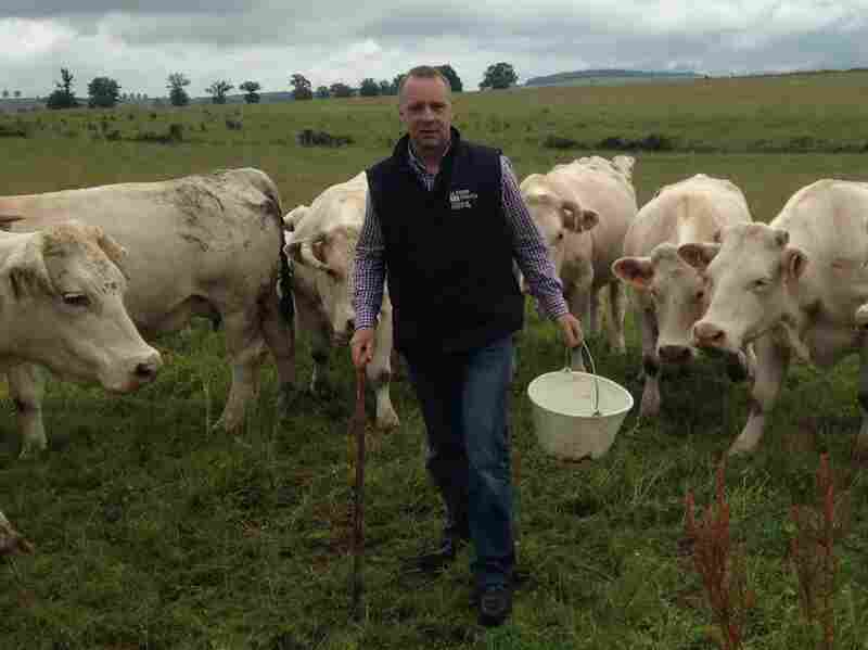 Most American beef is banned in Europe because most U.S. cattle are raised on genetically modified food. French farmer Michel Baudot has about 500 head of cattle in the Burgundy region and says he believes those rules should remain in place.