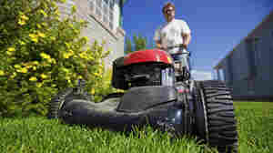 L.A. Residents Get Paid To Cut Lawns — Permanently