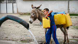 A boy collects water at a new spigot in Shululu, Tajikistan. Before the government built a new water system, villagers were allocated half-hour time slots to collect water from a trickling tap.