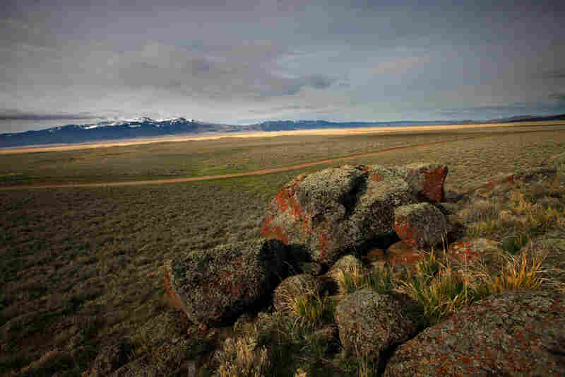 The wide-open prairie of the Centennial Valley in southwestern Montana. Sage grouse living here could be placed on the endangered species list if their numbers and prairie habitat continue to decline.