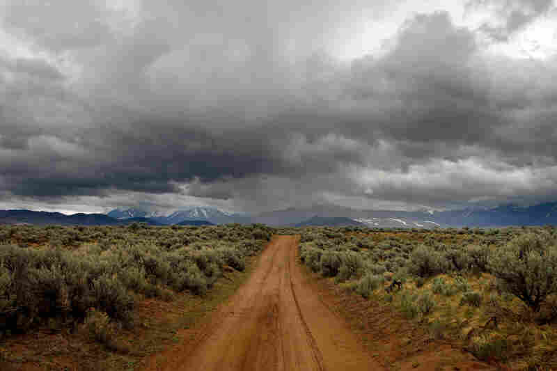 One of the few roads through the Centennial Valley passes through the sagebrush-covered dunes of the Centennial Sandhills Preserve.