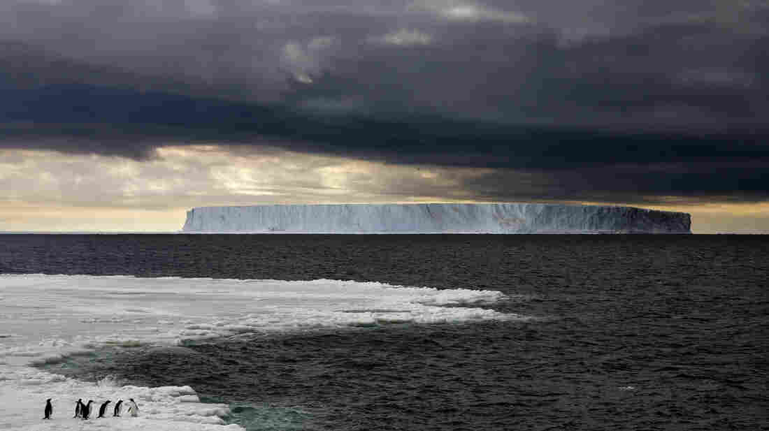 "The ""Giant Tabular Iceberg"" floats in Antarctica's Ross Sea in December 2011. Under a proposed new international agreement, large sections of the oceans around Antarctica would become protected as a marine preserve."