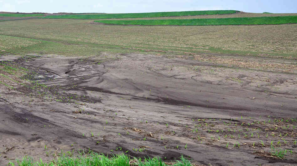 Soil erosion after five inches or more of rain fell in one hour across portions of Western Iowa in 2013.