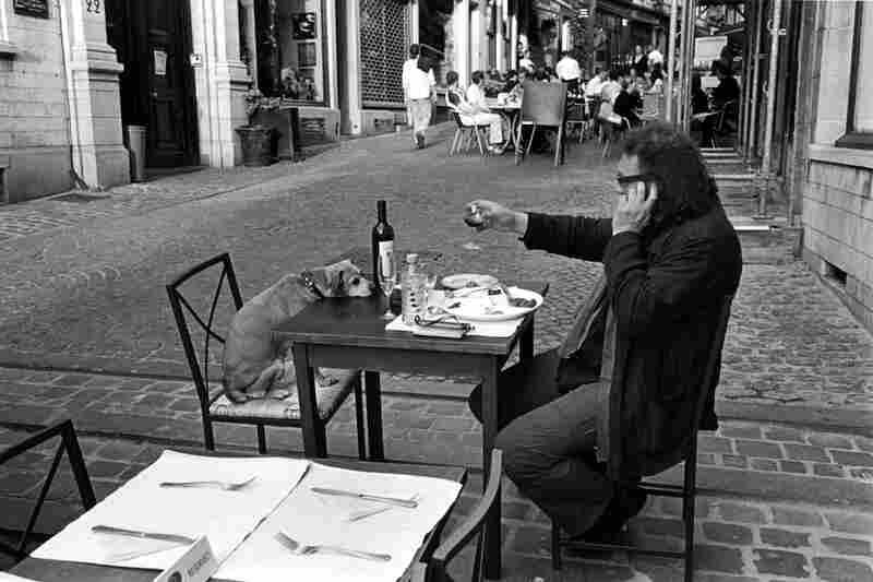 Brussels, Belgium, 2004