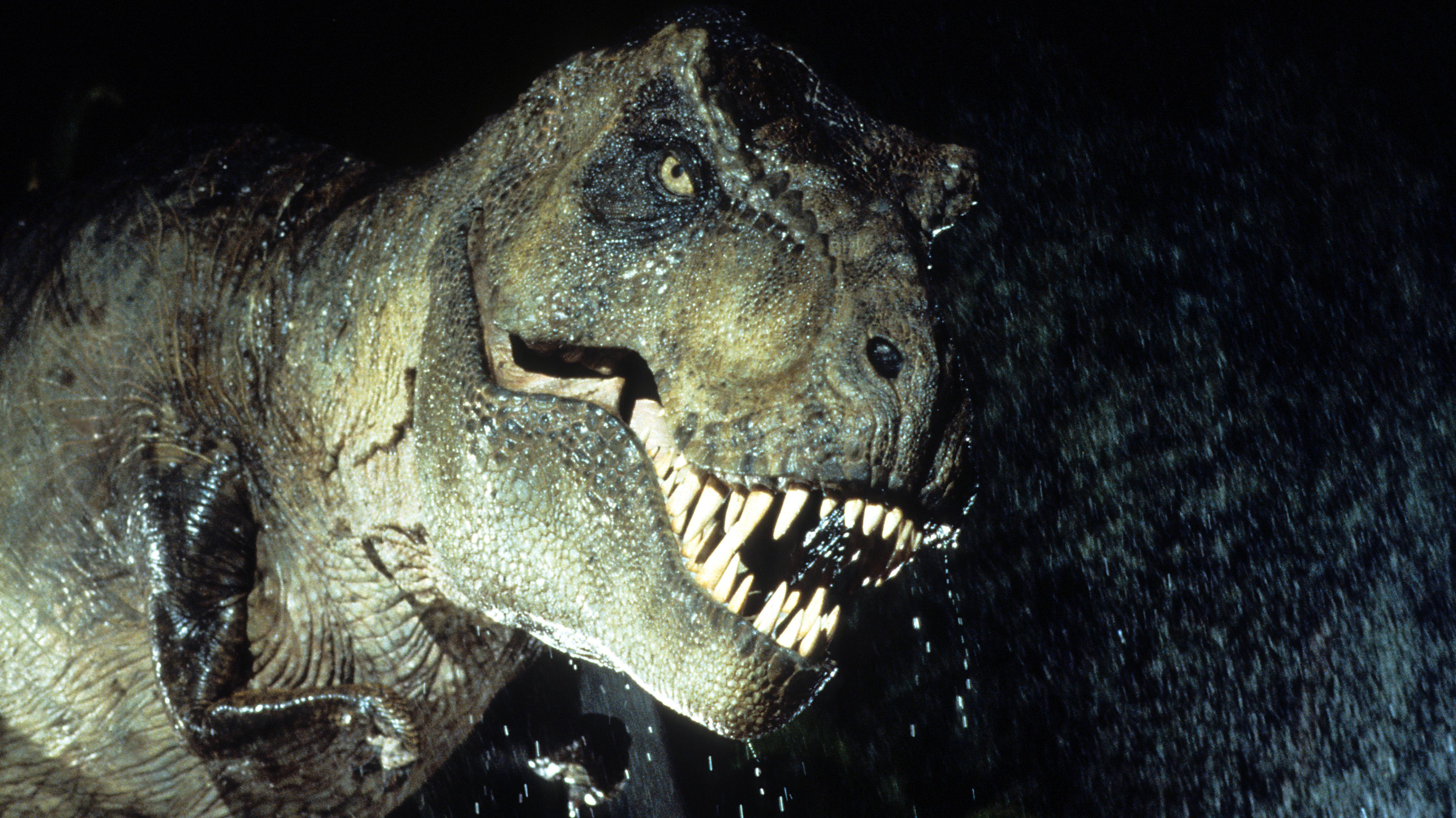 Om Nom Nom: T. Rex Was, Indeed, A Voracious Hunter