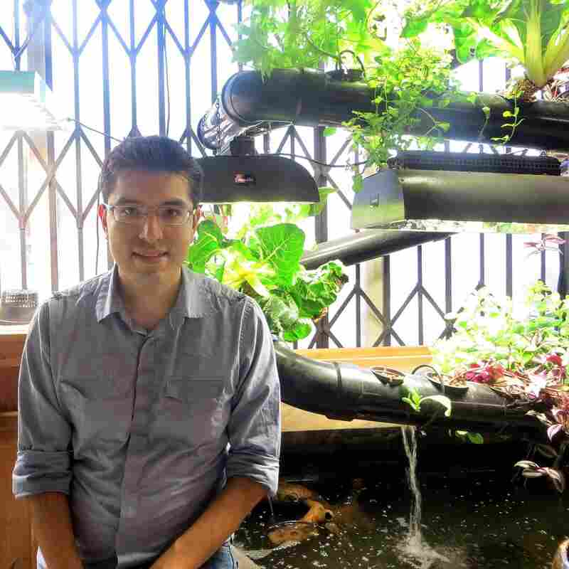 Juan Pablo Gonzalez, a science and math teacher in San Diego, posted an offer to teach urban planting, including hydroponic techniques. He and his wife were inspired by the site and offered to help by translating it into Spanish.