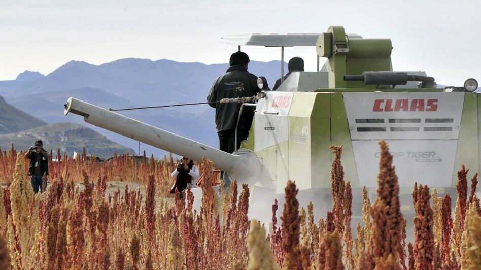 A combine harverster at work in a quinoa field in Pukara, southern Bolivia, in March. Bolivia produces 70 percent of the world's quinoa. (AFP/Getty Images)