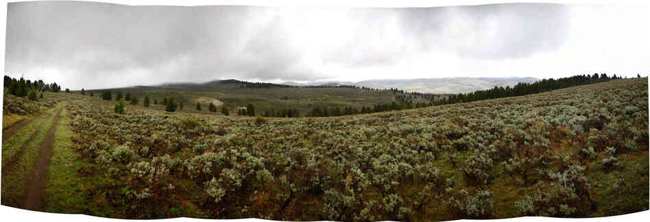 This composite panorama image shows a proposed controlled-burn site in the Centennial Valley of southwestern Montana.