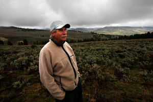 George Johnson, burn boss for The Nature Conservancy, surveys land he was hoping to burn, but wet weather postponed the burn until the fall. In a truly natural environment, the pine trees growing in the background would not be present.