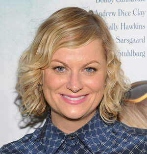 "Can ""Parks and Rec"" star Amy Poehler make health insurance fun, or at least funny?"