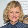 """Can """"Parks and Rec"""" star Amy Poehler make health insurance fun, or at least funny?"""