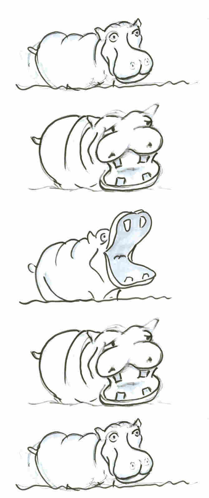 Hippo stack 2