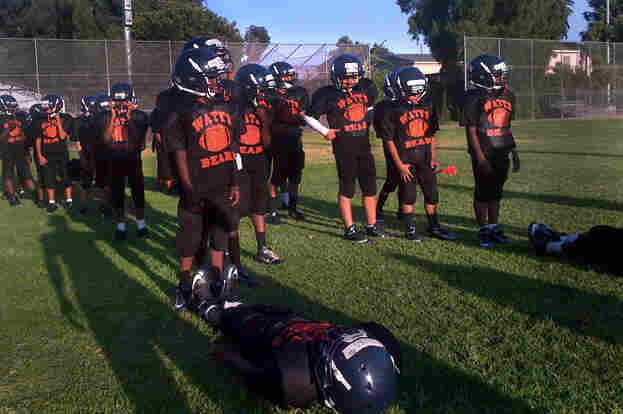 The Los Angeles Police Department helped launch the Watts Bears, a team of the Pee Wee division of Pop Warner football, in 2012. The players come from the neighborhood and practice at a park that's considered a neutral site between local gangs.
