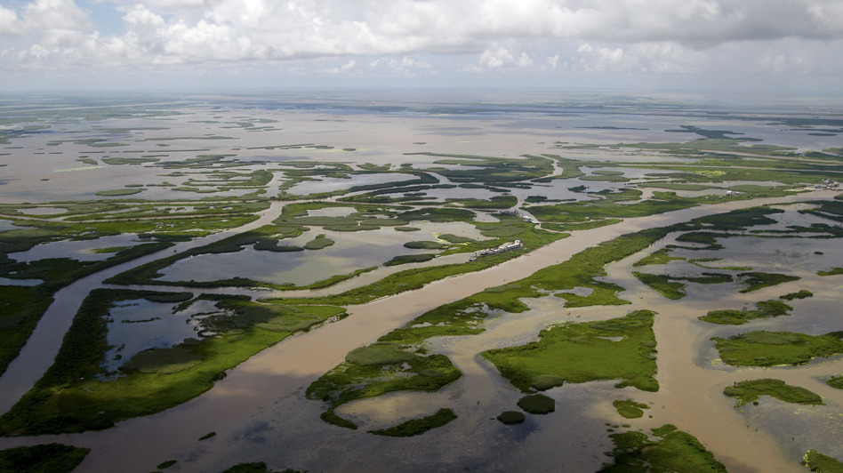 Canals created for navigation and oil and gas pipelines cut through the marsh off the coast of Louisiana, seen in 2010. (Bloomberg via Getty Images)
