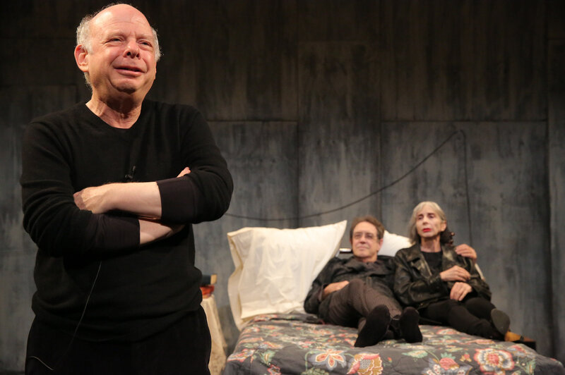 Wallace Shawn From Toy Story Dino To Highbrow Playwright