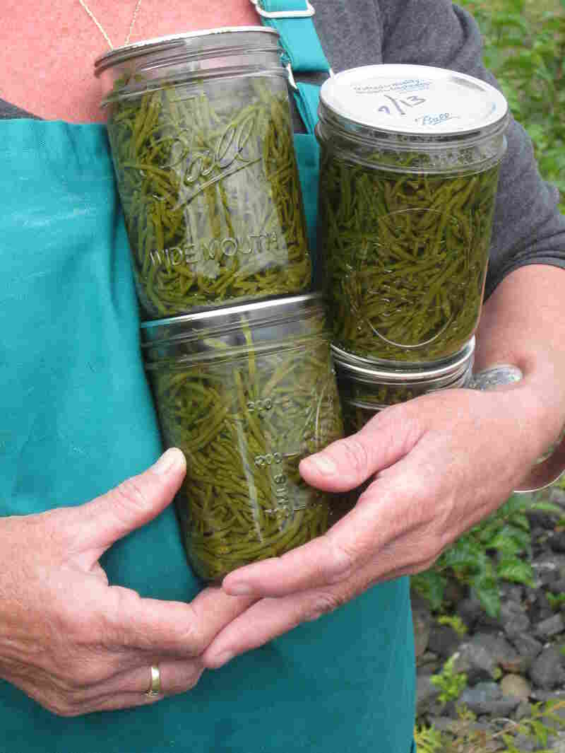 Mary Anna Murphy, one of only two year-round residents on Wadleigh Island, holds jars of sea asparagus she canned.