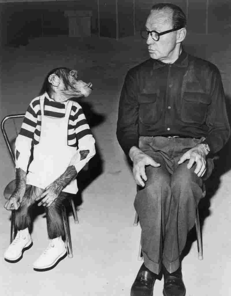 Marquis the chimp appears with comedian and show host Jack Benny. Most of the episodes included in The Jack Benny Program: The Lost Episodes DVD set haven't been available in more than 50 years.