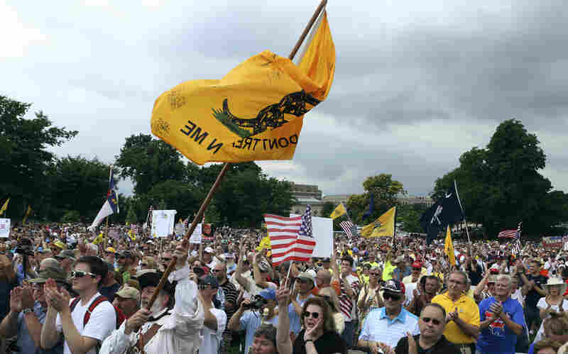 """The crowd cheers speaker Glenn Beck (not pictured) during a Tea Party rally to """"Audit the IRS"""" in front of the U.S. Capitol on June 19."""