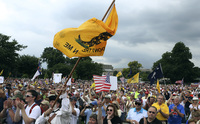 The crowd cheers speaker Glenn Beck (not pictured) during a Tea Party rally to