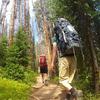 All in the name of science: Volunteers hike in Colorado during their one-week hiatus from electrical lighting.