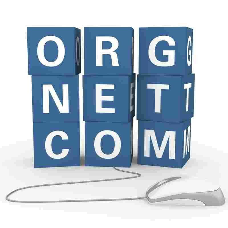 Beyond .Com: Some See Confusion In Internet Domain Expansion