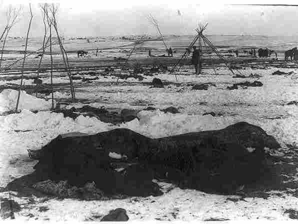 Big Foot's camp three weeks after the Wounded Knee Massacre (Dec. 29, 1890), with bodies of several Lakota Sioux people wrapped in blankets in the foreground and U.S. soldiers in the background.