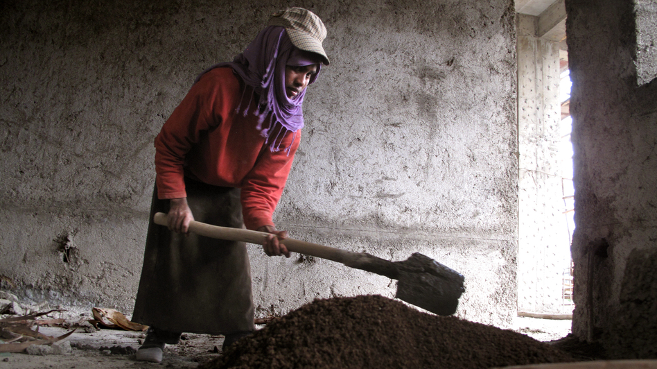 """Mekedes Getachew, 19, has been working at construction sites in Addis Ababa, Ethiopia, since she was 15 years old. Except for the heaviest lifting, she says, the laborers """"all do the same work and we don't really say this is a man's job, but when it comes to salary there's a difference."""" She earns $1.50 a day. Men earn $2. (Gregory Warner/NPR)"""