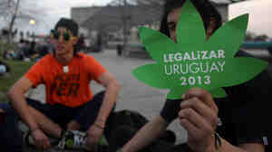 Young backers of a bill to legalize the production and trade of marijuana in Uruguay wait outside the Parliament buildi