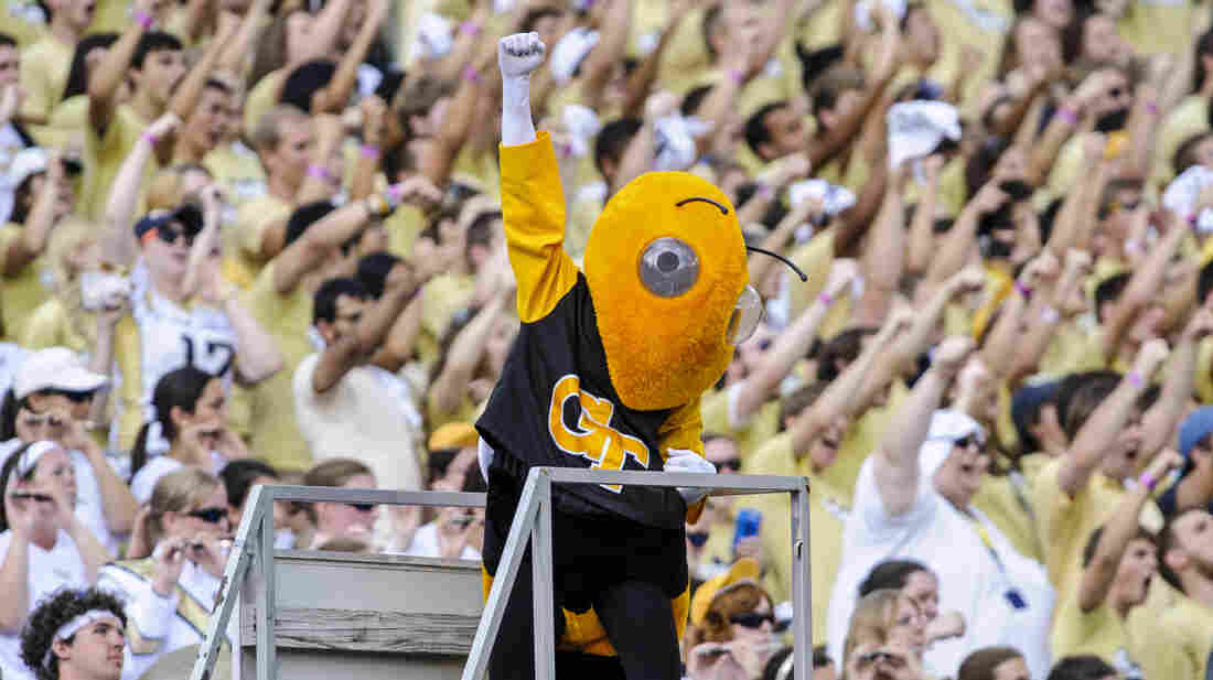 Buzz, Georgia Tech's mascot, wasn't the only bug in the students' midst last fall. An outbreak of bacterial pneumonia sickened at least 83 in what the CDC called the lar