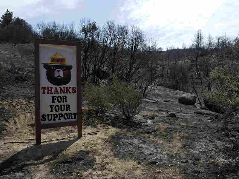 A Smokey the Bear sign stands undamaged by the flames that raced by it two days earlier on their way to engulfing 42 square miles of the San Jacinto Mountains in California. The sign sits next to the Esperanza Firefighters Memorial Highway, named after five firefighters who died battling the Esperanza Fire in similar terrain in 2006.