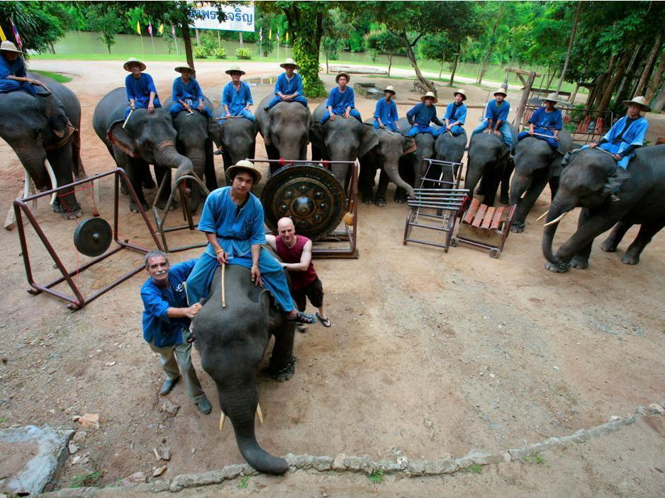 The Biggest Thing Out Of Thailand: An Elephant Orchestra