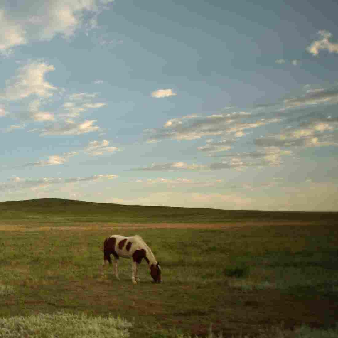 S. Dakota Indian Foster Care 1: Investigative Storytelling Gone Awry