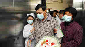 Genetic Code Shows Bird Flu In China Spread Between People