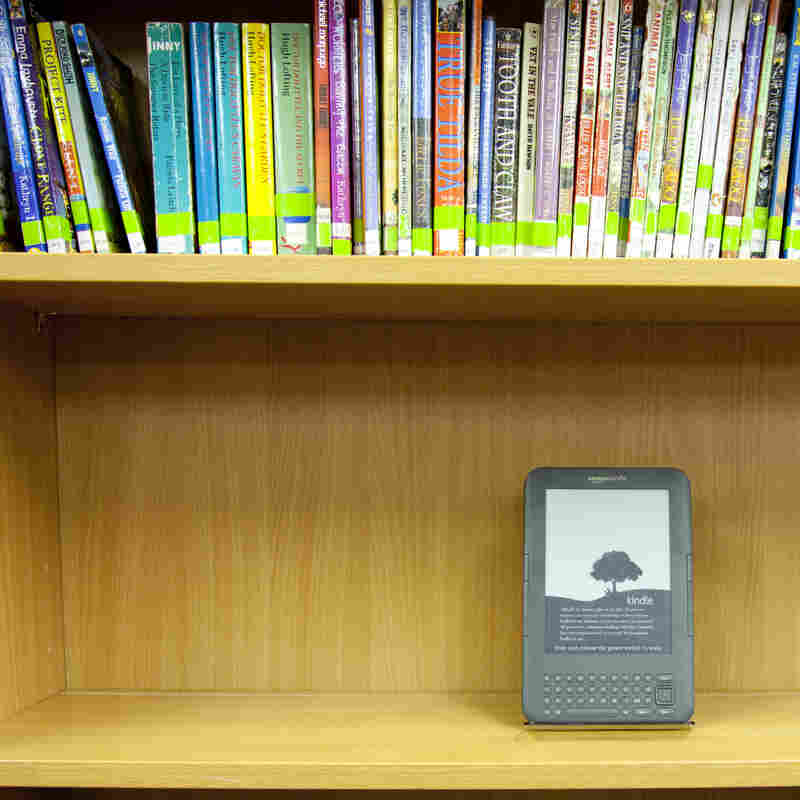 E-Books Strain Relations Between Libraries, Publishing Houses