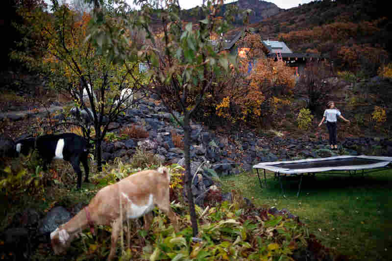 "Laela Janssen jumps on the trampoline in her backyard on Basalt Mountain. Her home, which is completely off the grid and uses all renewable energy, can be seen behind her. ""We live in a very site-specific place,"" says her father, Robb Janssen. The Janssens have springs above their property that feed into a creek; the creek then powers the entire house."