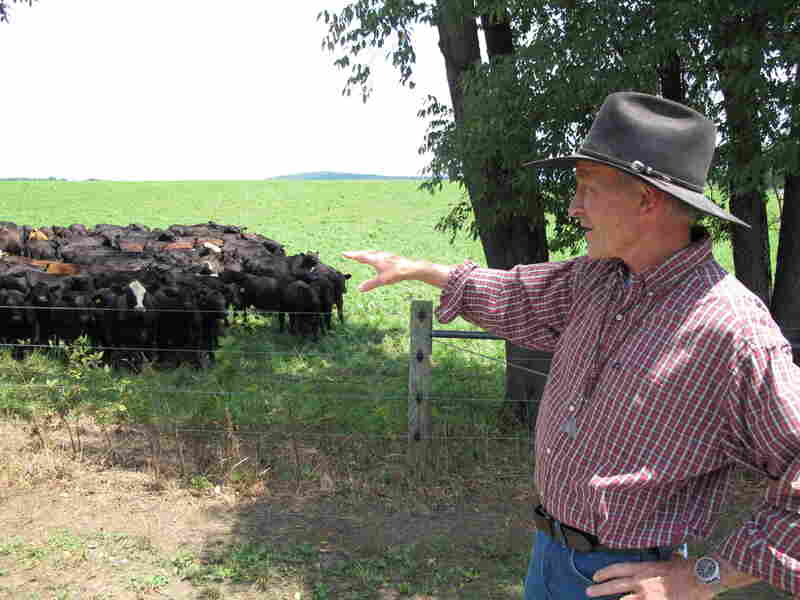 George Lake, owner of Thistle Creek Farm, feeds his cattle grass from five different countries.