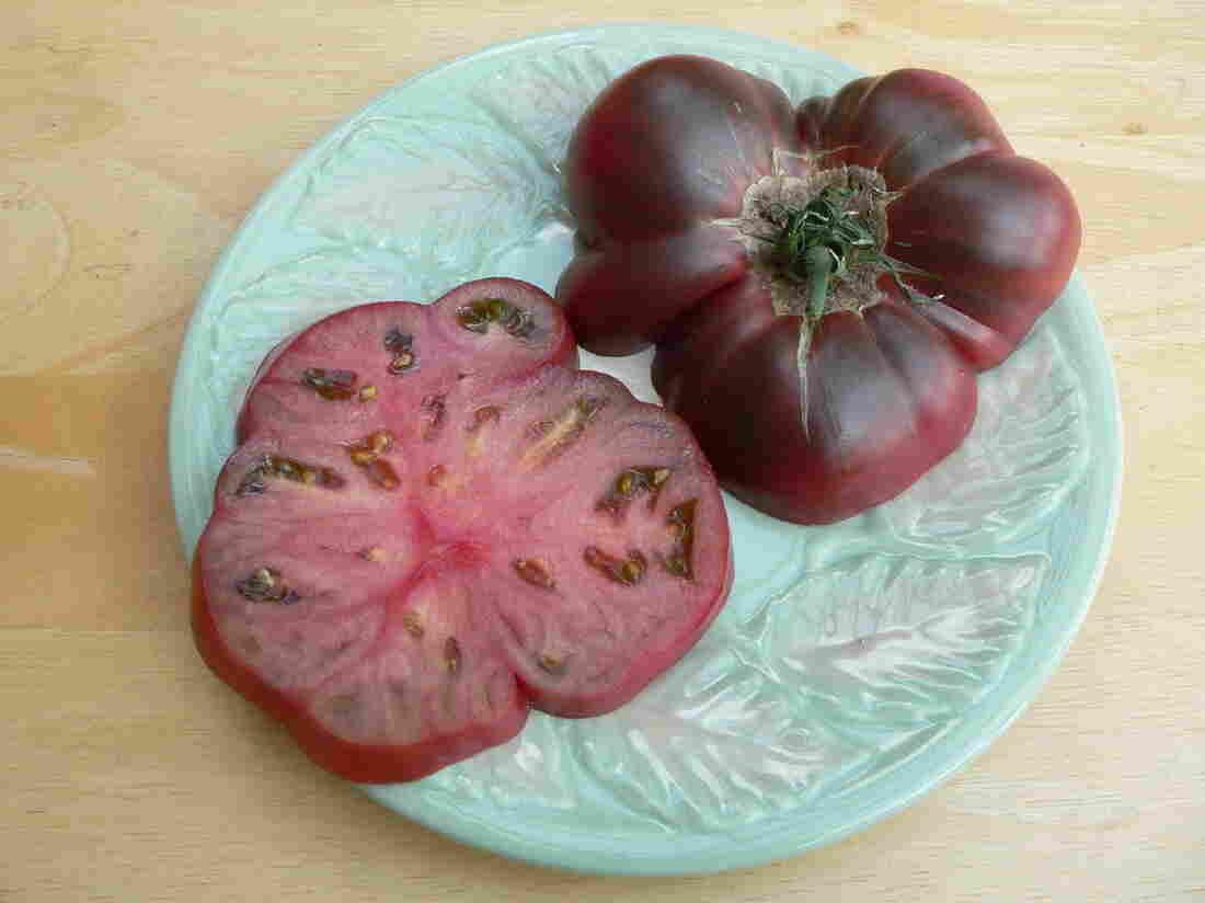 A Cherokee purple tomato grown in Alaska in 2011.