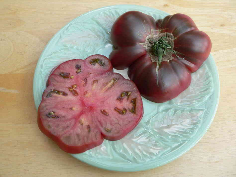 A Cherokee purple tomato grown in Alaska in 2011.