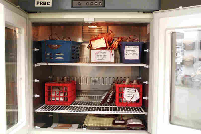 """It's pretty slim pickin's,"" Blue Ridge Veterinary Blood Bank manager Jocelyn Pratt says of the fridge where she stores packed red blood cells before they are mailed out. More than half of these will be gone by the end of the day, she predicts."