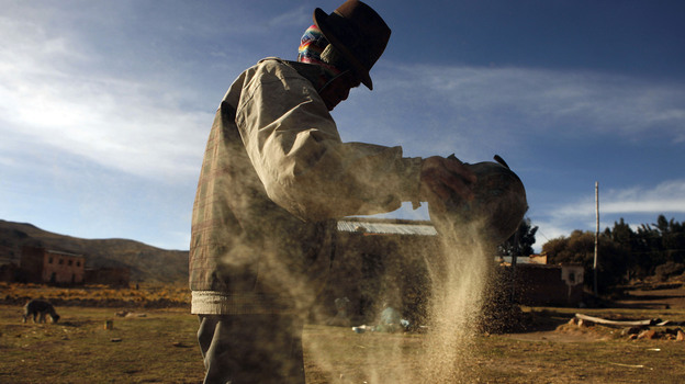 A man cleans quinoa grain in Pacoma, Bolivia. (AP)