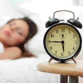 Of Neurons And Memories: Inside The 'Secret World Of Sleep'