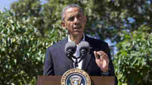 Obama 'Strongly Condemns' Crackdown In Egypt
