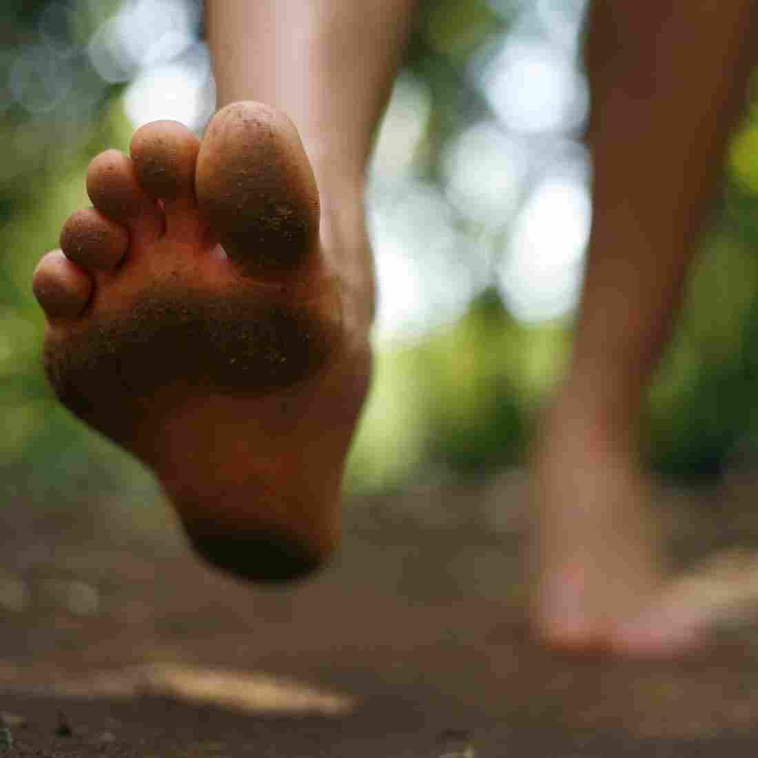 Golden Arches: Human Feet More Flexible Than We Thought