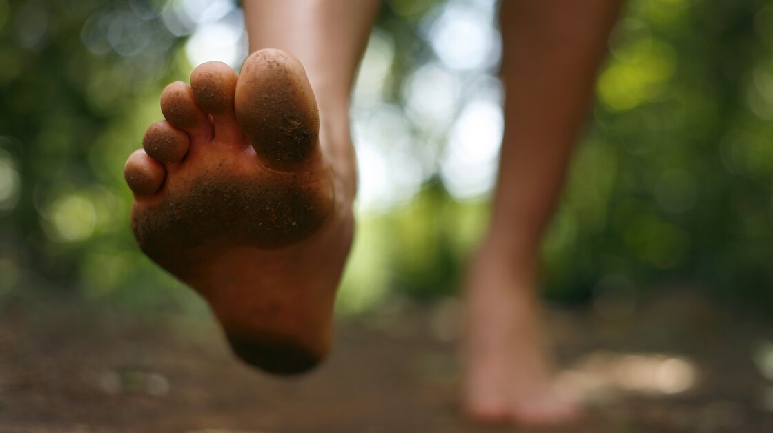 The healthy human foot's outer arch may be more flexible than previously thought.