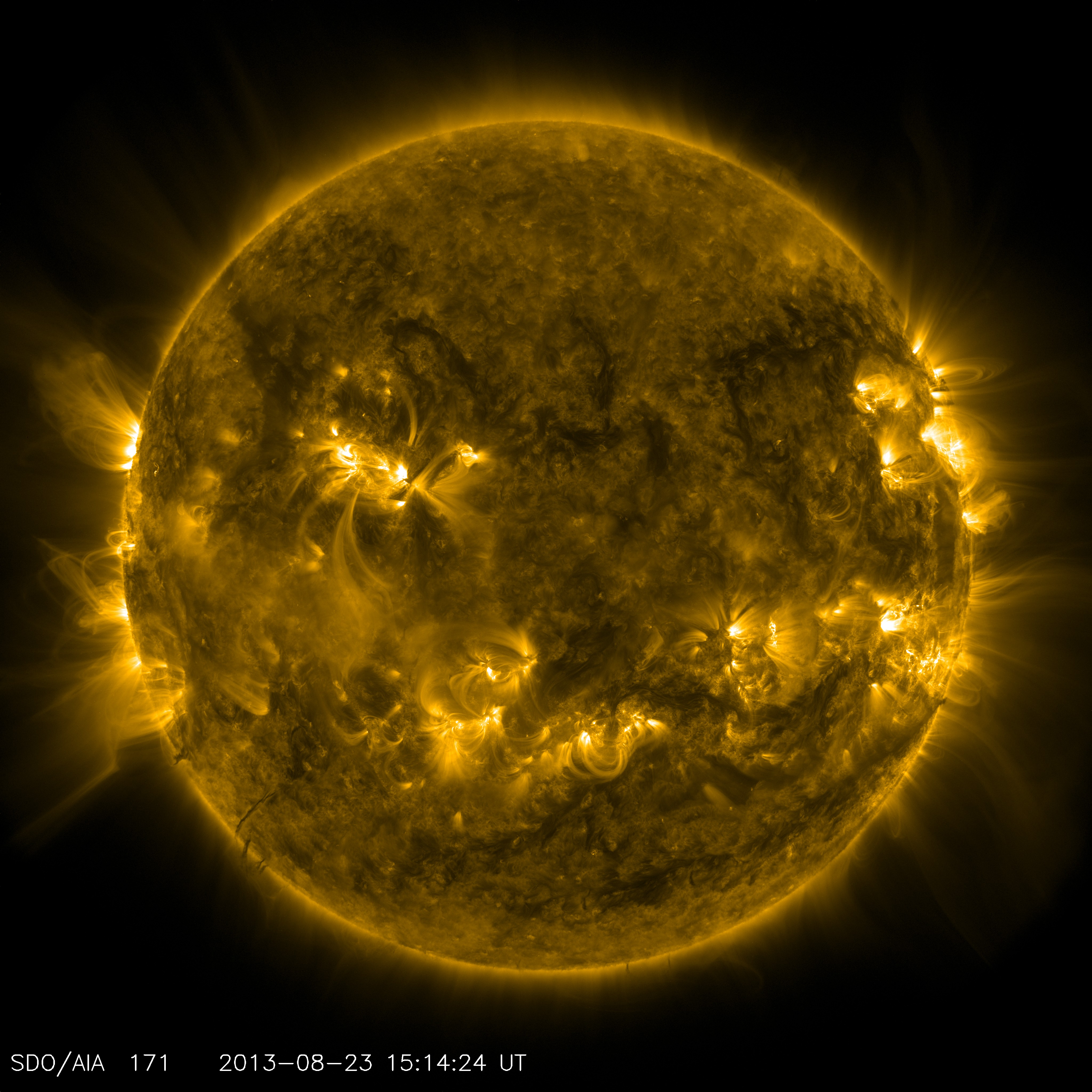 This channel is particularly good at showing coronal loops -- the arcs extending off the sun where plasma moves along magnetic field lines. The brightest spots seen here are places where the magnetic field near the surface is exceptionally strong.