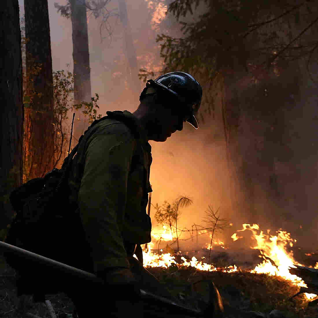 A Colorado-based firefighter monitors a backfire while battling the Rim Fire in Groveland, Calif., on Thursday. The Rim Fire continues to burn out of control and has grown to more than 105,000 acres, officials said Friday.