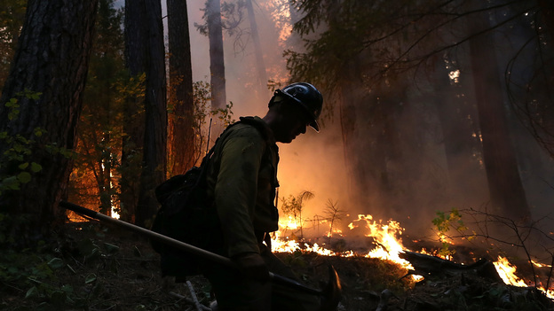 A Colorado-based firefighter monitors a backfire while battling the Rim Fire in Groveland, Calif., on Thursday. The Rim Fire continues to burn out of control and has grown to more than 105,000 acres, officials said Friday. (Getty Images)