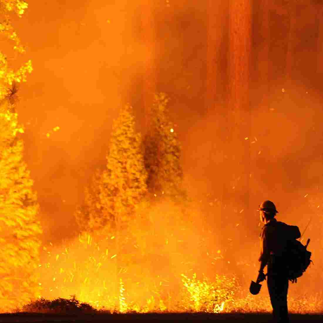 'Fire Tracker': Online Tool To Monitor Blaze Near Yosemite