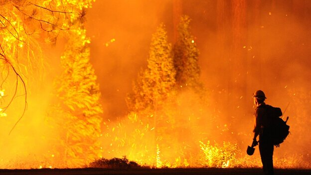 "Some of the flames Saturday as the ""Rim Fire"" spread near Northern California's Yosemite National Park. (MCT /Landov)"